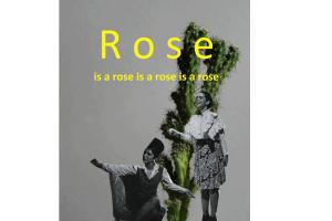 Rose is a Rose στην Alibi Gallery